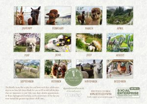 Alpacaly Ever After 2021 Calendar
